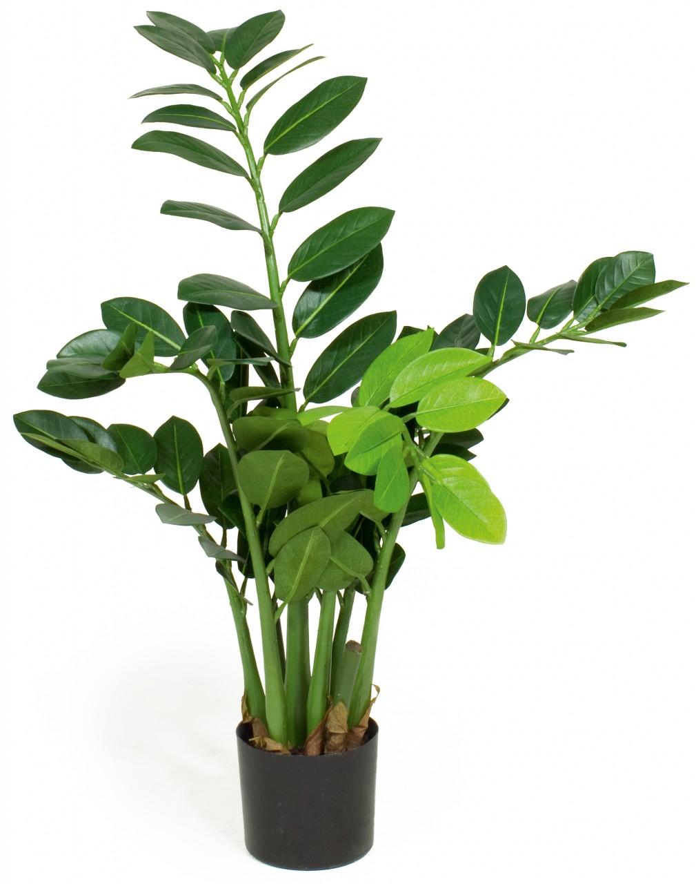 ZAMIOCULCAS Kunstpflanze, 65 cm