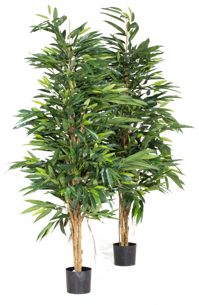 LONGIFOLIA ROYAL NATURAL Kunstpflanze, 180 cm