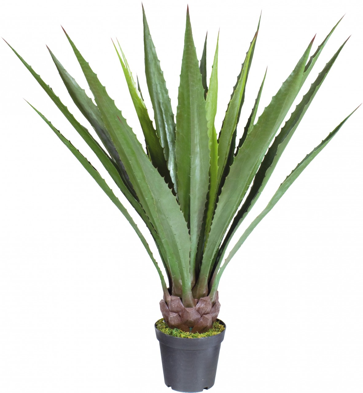AGAVE DELUXE Kunstpflanze, 95 cm